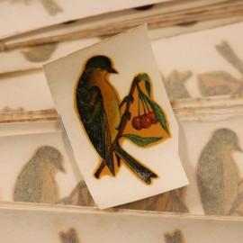 décalcomanie décalco fleur 1950 1960 sticker 1 oiseau vert cerise