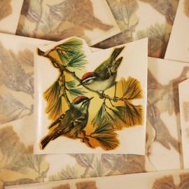 décalcomanie décalco fleur 1950 1960 sticker 1 oiseau couple branche