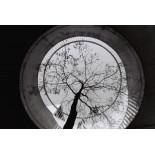 lomography berlin kino 400 orwo lomo 35mm black and white