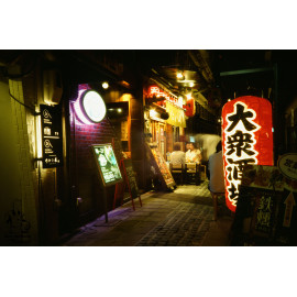 kodak ektachrome analog film slide color E100 100 image example shot