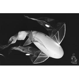 Marinette Classic Film M102 Pellicule Tasma 42L noir et blanc Aerial 42 L 1600 Iso 1300 Iso haute vitesse