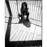 fomapan classic 100 35mm 135 pellicule argentique noir et blanc test photo exemple rendu