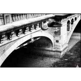 ilford hp5 plus 400 120 roll medium format black and white analog film BW 400 iso sample shot picture photo test