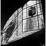 rollei ortho 25 plus argentique noir et blanc film 35mm pellicule orthochromatique test rendu photo exemple image