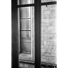 bergger pancro 400 120 film analog french lab 120 medium format black and white test sample shot photo picture