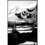 rollei retro 400s argentique pellicule noir et blanc exemple photo rendu test image