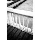 kodak t-max 400 analog film black and white thin grain photo sample shot picture test
