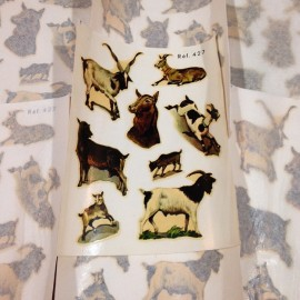 Chèvres sticker eau décalcomanie stock vintage école 1960