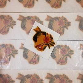 décalcomanie oiseau colibri vintage stock école sticker eau 1960