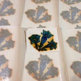 décalcomanie fleur fleurs vintage stock école sticker eau 1960