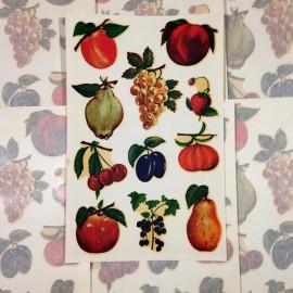 fruit fruits antique vintage sticker water transfer school stationery 1960