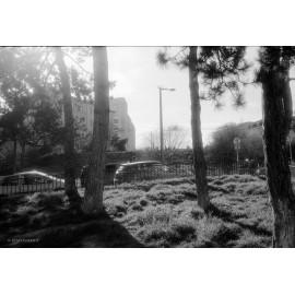 kodak t-max 100 film 120 noir et blanc bobine rouleau moyen format exemple rendu test photo essai