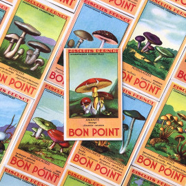 bon point favor school vintage old antique 1940 1950 mushroom biscuits pernot illustration
