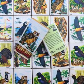 oiseaux boite allumette ancien vintage seita wwf patrick lazare suiro 1980 tabac