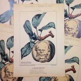dessin satirique fruits fleurs légumes du jour ancien vintage illustration alfred le petit pouyer quertier imprimerie 1940 pomme